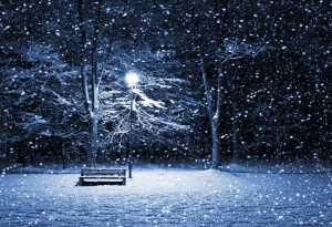 HD Winter Night Landscape