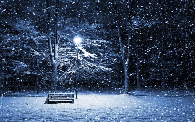 Beautiful Night Winter Landcape