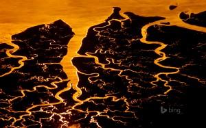HD Suwanee River Delta