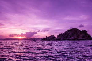 Sunset Pelican Island Wallpaper