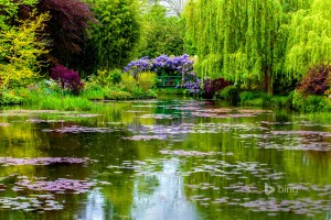 Monet Garden, Giverny Haute-Normandie France