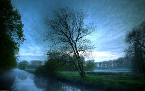 HD Foggy River with Tree Background
