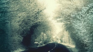 HD – Mystery Winter Road