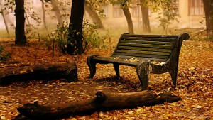 HD Lone Park Bench