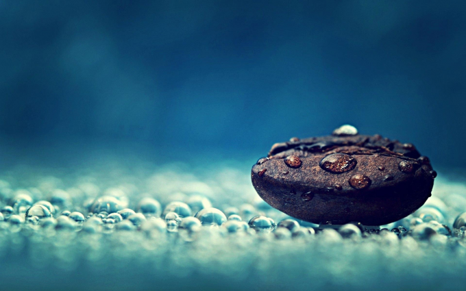 Water Droplet on a Rock Wallpaper