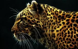 HD Magnificent Leopard Wallpaper