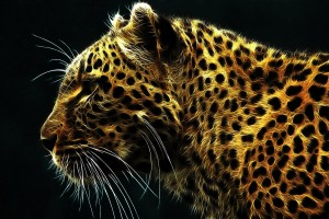 HD Magnificent Leopard Wallpaper