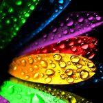 HD True Bright Colors for S4 Galaxy Smartphone